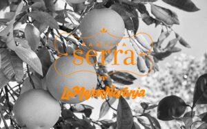 Proyecto Ecommerce La Mejor Naranja -Comonline, Especialistas Ecommerce
