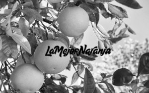 Proyecto tienda online La Mejor Naranja, Comonline Especialistas Ecommerce