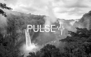Pulse Imagen Logo | Proyecto Comonline Especialistas Ecommerce